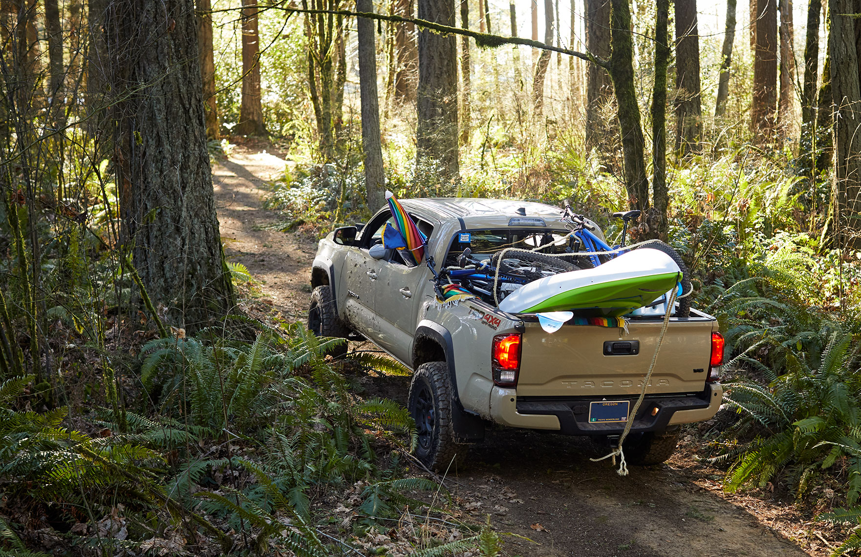 Shot_06-Tacoma_PrivateLand_ForestRoad_1294